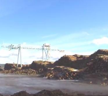 Log Yard Steam