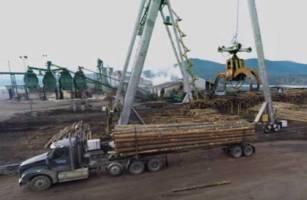 logs-to-lumber-e1496762732703.jpg